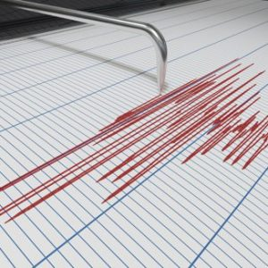 A 2,9 magnitude quake of has occurred in Vrancea area
